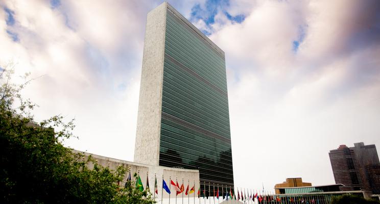 Qué relación tienen las ONG con la ONU